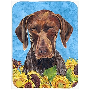 Caroline's Treasures German Shorthaired Pointer Glass Cutting Board