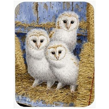 Caroline's Treasures Barn Owl Chicks Glass Cutting Board
