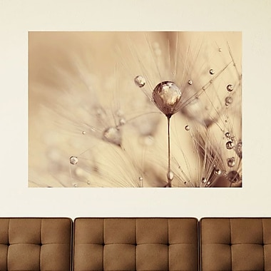 My Wonderful Walls A Touch of Gold by Ingrid Beddoes Wall Decal; Medium