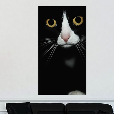 My Wonderful Walls Are You Looking at Me by Ingrid Beddoes Wall Decal; Small