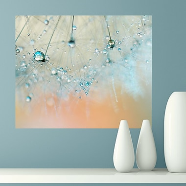 My Wonderful Walls Droplets of Aqua by Ingrid Beddoes Wall Decal; Small