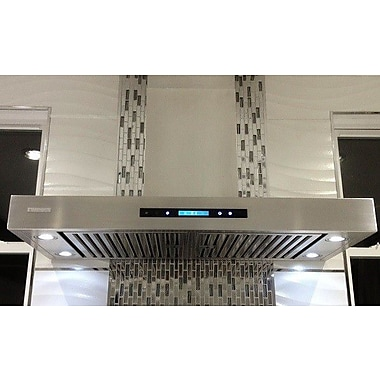 Xtreme Air 42'' Pro-X 900 CFM Ducted Wall Mount Range Hood