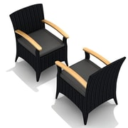Harmonia Living Arbor Dining Arm Chair w/ Cushion (Set of 2); Canvas Charcoal