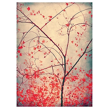 My Wonderful Walls Tree Photography Wall Decal; Large