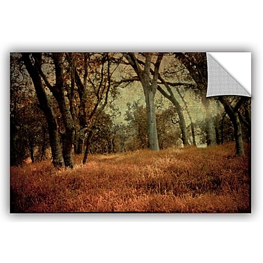 ArtWall Meander 1 Removable Wall Mural; 24'' H x 36'' W x 0.1'' D