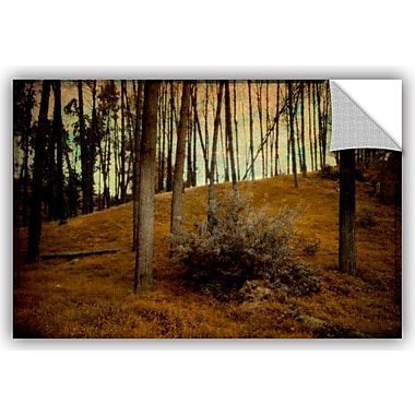 ArtWall Meander 4 Removable Wall Mural; 24'' H x 36'' W x 0.1'' D