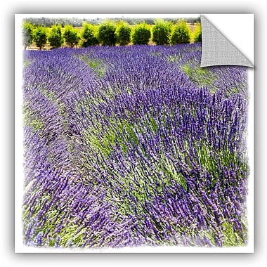 ArtWall Fragrant Fields Removable Wall Mural; 14'' H x 14'' W x 0.1'' D