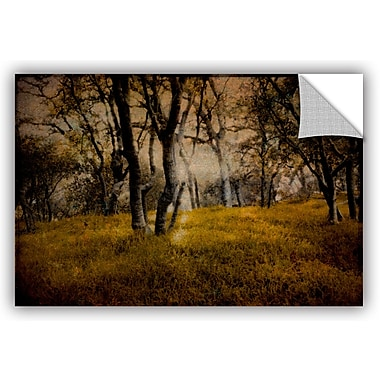 ArtWall Meander 2 Removable Wall Mural; 16'' H x 24'' W x 0.1'' D