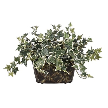 House of Silk Flowers Artificial Variegated English Ivy Desk Top Plant in Decorative Vase