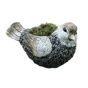 Alpine Bird Magnesia Statue Planter