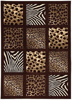 Brady Home Chocolate Area Rug; 8' x 11'