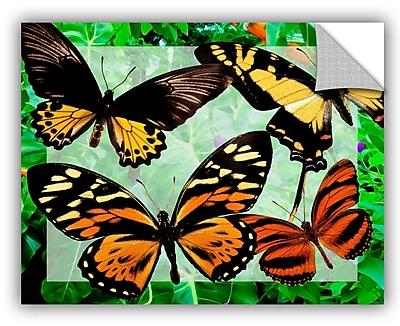 ArtWall Melinda Bradshaw Butterflies Wall Mural; 36'' H x 48'' W