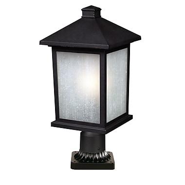 Z-Lite 507PHB-BK-PM Holbrook Outdoor, 1 bulb, White Seedy Glass