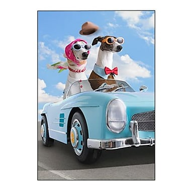 Hallmark Anniversary Greeting Card, Here's to Another Year of Life in the Fast Lane! Happy Anniversary (0295QUA2121)