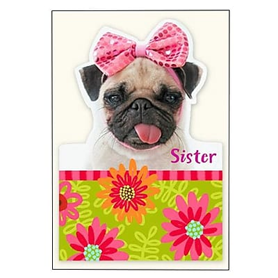 Hallmark Birthday Greeting Card, be as Sassy as You Want on Your Birthday. Today is All About You?(0295QUF3160)