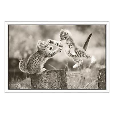 Hallmark Birthday Greeting Card, Birthday Hug Comin' at Ya! (0250QUB2411)