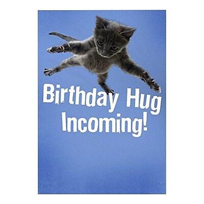 Hallmark Birthday Greeting Card, Birthday Hug Incoming! (0349ZZB5186)