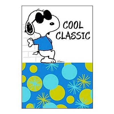 Hallmark Birthday Greeting Card, Cool Classic (0295QUH3404)