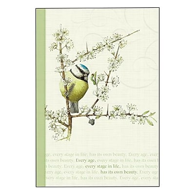 Hallmark Birthday Greeting Card, Every Age, Every Stage in Life, Has Its Own Beauty (0295QUF3014)