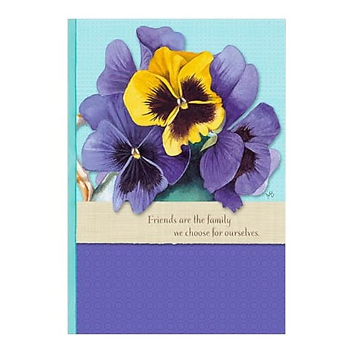 Hallmark Birthday Greeting Card Friends Are The Family We Choose For Ourselves 0295QUF3077