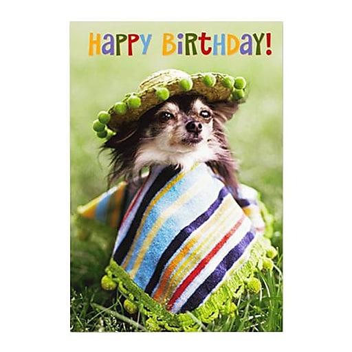 Hallmark Birthday Greeting Card, Happy Birthday! (0250QUH3326)