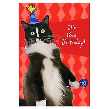 Hallmark Birthday Greeting Card, It's Your Birthday! (0595QBX1506)
