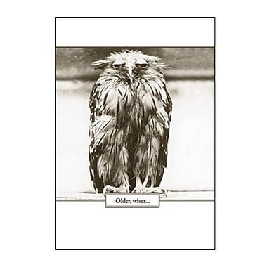 Hallmark Birthday Greeting Card, Older, Wiser (0295QUB2412)