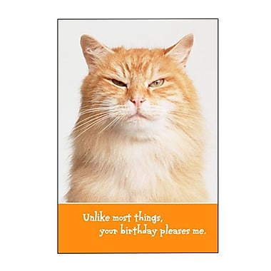 Hallmark Birthday Greeting Card, Unlike Most Things, Your Birthday Pleases Me (0295QUB2429)