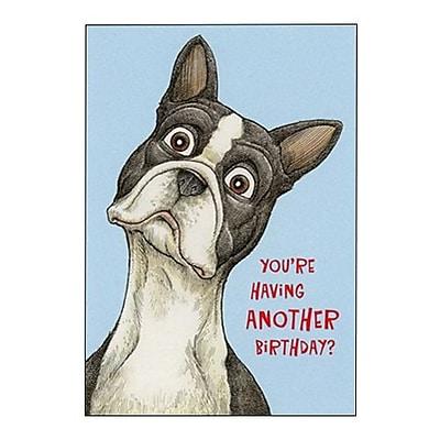 Hallmark Birthday Greeting Card, You?re Having Another Birthday? (0250QUH3349)