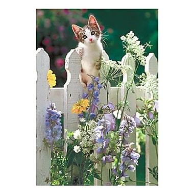 Hallmark Blank Greeting Card (0250QBK1214)