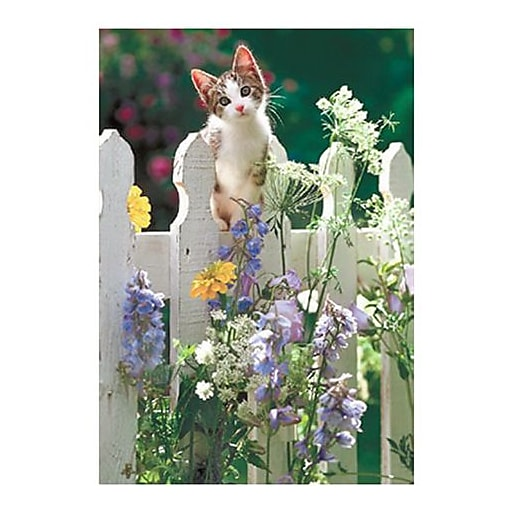 Hallmark Blank Greeting Card (0250QBK1214)