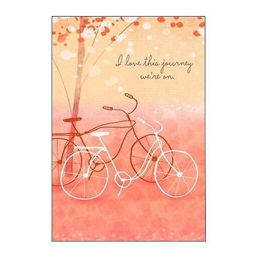 Hallmark Love Greeting Card, I Love This Journey We're on (0295QUL3919)