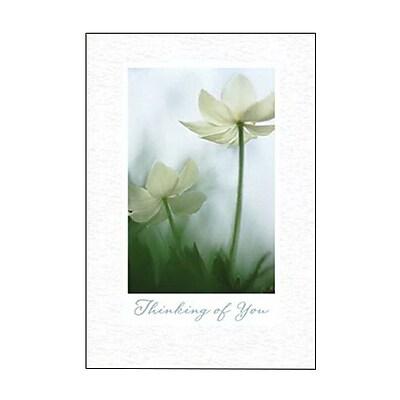 Hallmark Sympathy Greeting Card, Thinking of You (0295QSY1916)