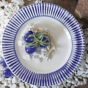Creative Co-Op Indigo Decorative Platter