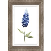 Ashton Wall D cor LLC In Bloom 'Bluebonnet II' Framed Painting Print in Blue