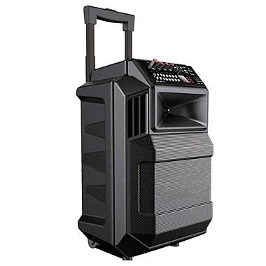 Quantum pbx-2181 Bluetooth Portable Speaker, Black