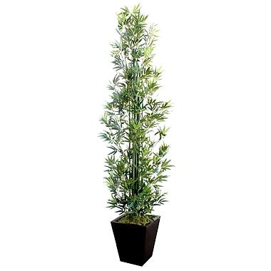 Dalmarko Designs Bamboo Tree in Planter