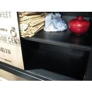 Stein World Painted Treasures Vintage Transit Inspired 2 Door Accent Cabinet