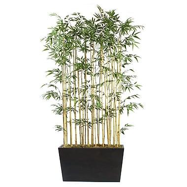 Dalmarko Designs Bamboo Floor Plant in Planter