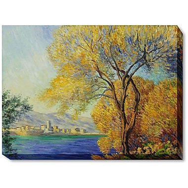 Wildon Home Antibes, View of Salis by Claude Monet Framed Painting