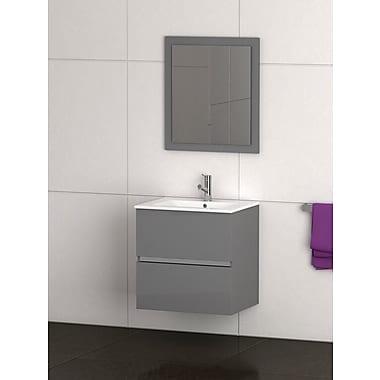 Eviva Ikaro 24'' Single Bathroom Vanity Set; Gray