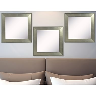 Rayne Mirrors Ava Brushed Silver Wall Mirror (Set of 3)