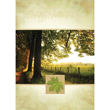 Millbrook Wishing You a Happy Fathers Day Greeting Card, (23907), 18/Pack