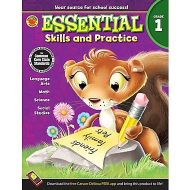eBook: Brighter Child 704466-EB Essential Skills and Practice, Grade 1