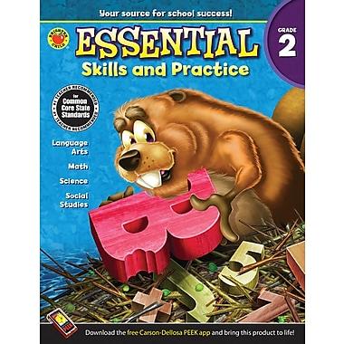 Livre numérique : Brighter Child� -- Essential Skills and Practice 704467-EB, 2e année