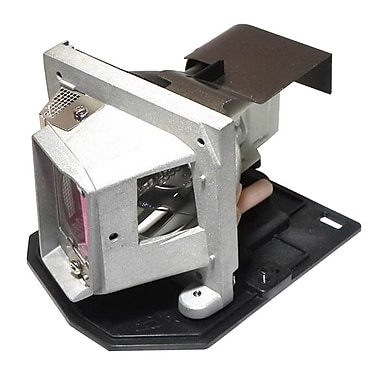 eReplacements 180 W Replacement Projector Lamp for toshiba TDP-X/TDP-XP1, Silver (TLPLV10-ER)