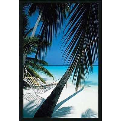 Amanti Art Palm View Hammock' Framed Art Print with Gel Coated Finish 25
