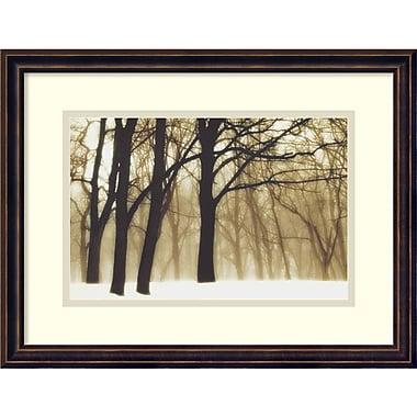 Amanti Art David Lorenz Winston Past Dreams, 2002 Framed Art Print, 18