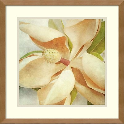 Amanti Art Honey Malek 'Vintage Magnolia I' Art Print 17 x 17 in. Natural Gallery Wood Frame (DSW2972592)