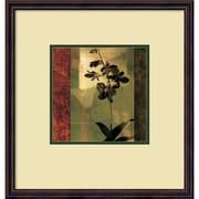 Amanti Art Chris Donovan 'Mesmerized II' Art Print 19 x 20 in. Bronze wood Frame (DSW1396598)